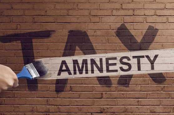 amnesty_1596477752.jpg