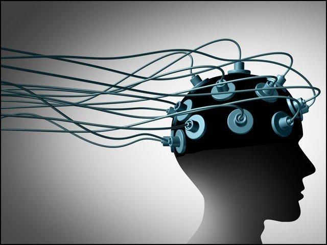 brain_1611231779.jpg