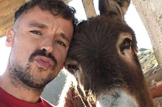donkey_1590072510.jpg
