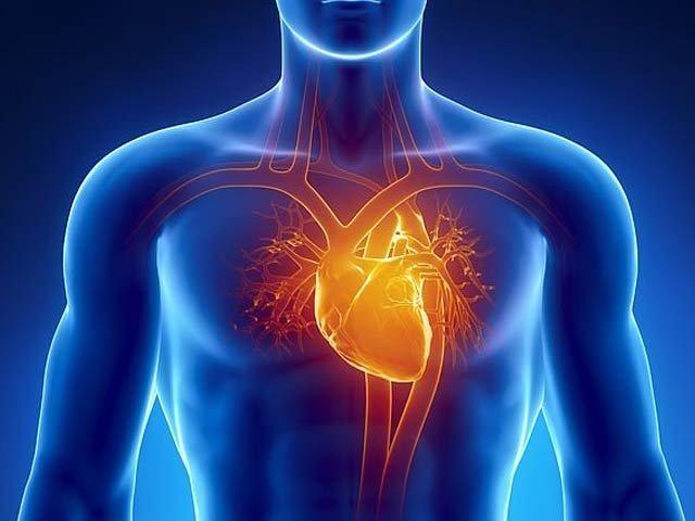 heart_1590494746.jpg