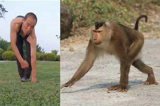 monkey_1594386544.jpg