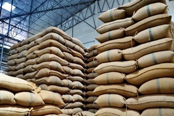 wheat_1590753947.jpg
